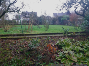 Blick auf den Garten im Januar 2018, vor der Umgestaltung