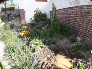 fertig bepflanzter Vorgarten mit Todholzstamm und Lehmpfütze