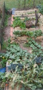 Gemüsebeet mit Mulchwurst und Bewuchs