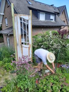Alte Holztür an der rechten Seite des Rosenbogens installiert