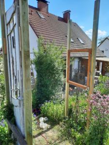 Blick von der Holztür auf das Holzfenster